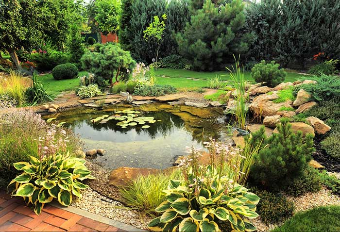 Effective Ways To Landscape