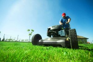mowing grass lawn care service